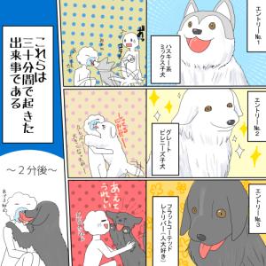 【犬漫画】あ!もふもふ三獣士 が あらわれた!▼