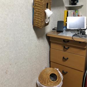 部屋が手狭になってきたので伊勢藤(ISETO)の壁掛けゴミ箱と壁掛けティッシュケースを購入してみた!