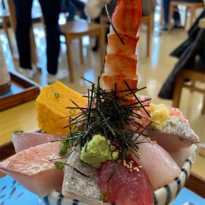 漁港の駅 TOTOCO小田原の「小田原漁港 とと丸食堂」で漁港の海鮮丼を頂いた! #グルメ #食べ歩き #ランチツー