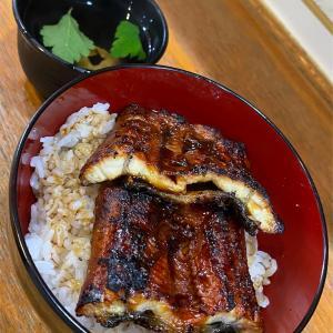 久しぶりに調布へ来たので「宇奈とと」でうな丼ダブルを頂いた。 #グルメ #食べ歩き #鰻 #うなぎ