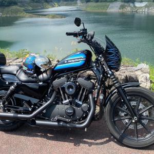 ドミニオン・コレクションのグリップに交換して初ソロツーに有間ダムまで行ってきました。 #ハーレー #スポーツスター #Harley #Sportster #XL1200NS