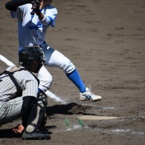 大学、社会人野球楽しみ方