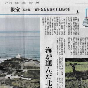 根室のこと読売新聞夕刊に掲載