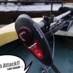 ブラックバス釣り in 相模湖 6回目【2019:ワタクシらしい釣り納め】