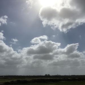 台風による強風で海岸砂丘に「砂柱」発生