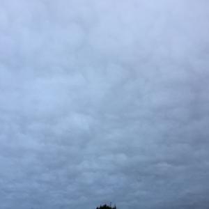曇り空で時々弱い雨、肌寒い