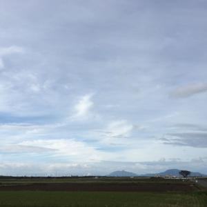 台風から伸びてきた中上層の雲帯