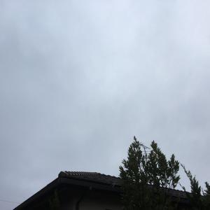 雲厚く日食は見られず・・・