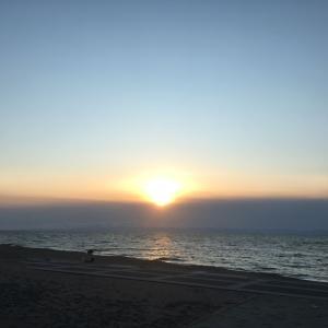 海岸では風が冷たく・・・