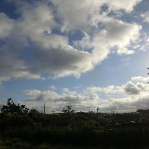 午後はすっきりと晴れ、鳥海山まで望める