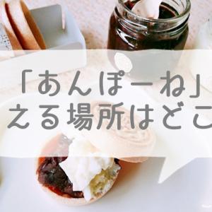 京都のお土産あんぽーねが買える場所は?通販やお取り寄せはできる?