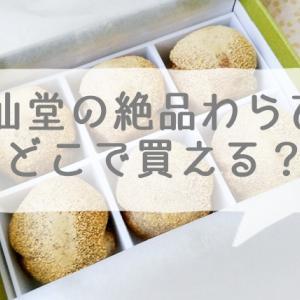 京都 喜仙堂のわらび餅が絶品!山科駅からのアクセス方法は?