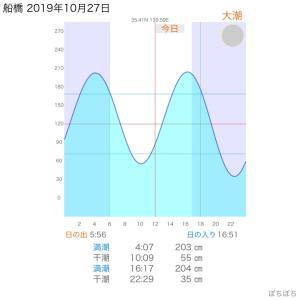 10月27日(日)青物チャレンジ2回目 完ボ