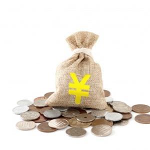 臨時収入の使い道をどうするか・・・