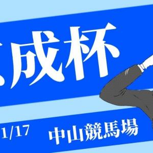 ツルマツコンピ22001月17日(日)中京中山小倉