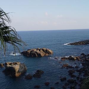 宮崎・鵜戸神宮から眺める日向灘