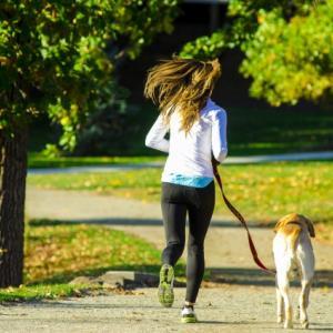 犬を飼うとダイエットに効果的!痩せる理由を徹底考察!