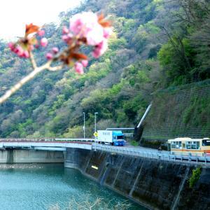 2753.  津久井湖の神奈中エアロ