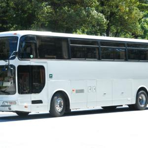 2799.  キャビンバス(静岡羽毛販売) エアロクイーンⅢ