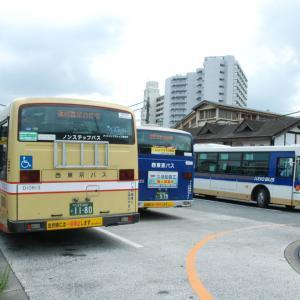 2810.  平成28年の高尾駅 西東京バス&京王バス