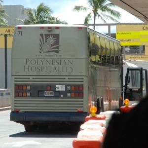 2811.  8連テールのハワイのバス