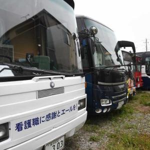 """3123.  都筑区の""""トワイライトゾーン"""" / バス!!"""