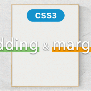 【CSS】paddingとmarginの余白の指定方法の違い