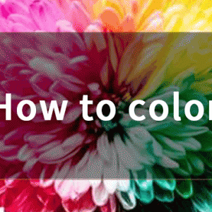 CSSを使った文字色・背景色の付け方