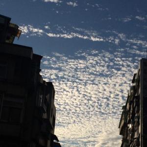 台北12月日常
