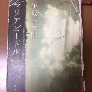 本日本「マリアビートル」