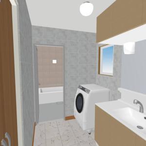 間取り詳細【洗面所と浴室】仕様やこだわり、後悔、オプション、電気設備