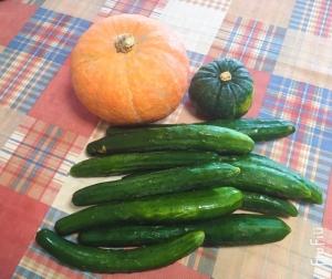 今夏も福島の美味しいお野菜が届きました