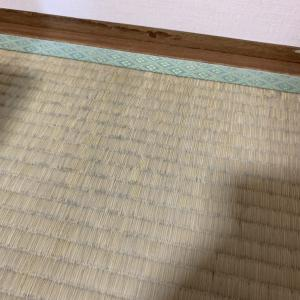 畳にカビが生えました。