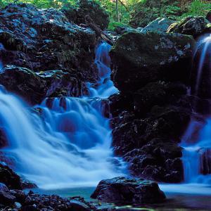 昔々ある沢に美しい滝がありましたとさ ── 「星移幾秋の滝」の想い出