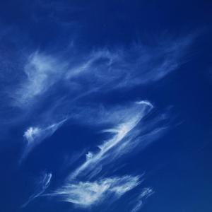 青い中秋の名月の宵に ── 残夏日記 令和三年九月二十一日(火)