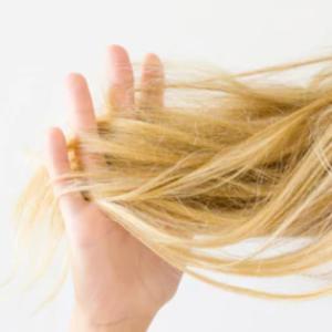 気になるパサパサ髪の原因と対策
