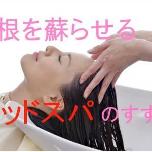 抜け毛の原因は頭皮環境にあり!?毛根を蘇らせるヘッドスパのすすめ
