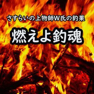 さすらいの上物師W氏の釣果。燃えよ釣魂(tsuridama)!!