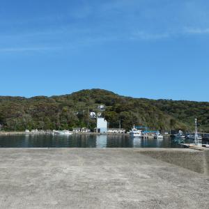 春の馬渡島。波止場で魚は食ってくるのか。