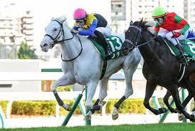 【レース予想】札幌2歳ステークス【G3】