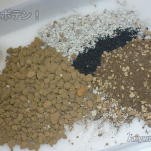 使い回し、再利用でサボテン用土をブレンド!【サボテン ダイソー】