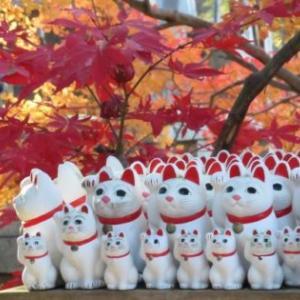 「幸せの招き猫電車 世田谷線50周年を祝して運行中」