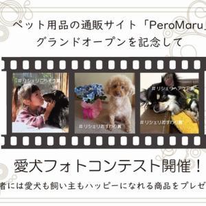 「愛犬フォトコンテスト開催♪ペット用品のオンラインショップがオープン記念で」