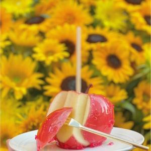 「りんご飴専門店 キャンディアップルが1週間限定で名古屋に出店します!」