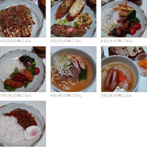 10/04~10/10の晩ごはんとお弁当(お昼)