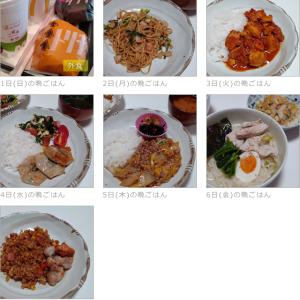 11/01~11/07の晩ごはんとお弁当(お昼)