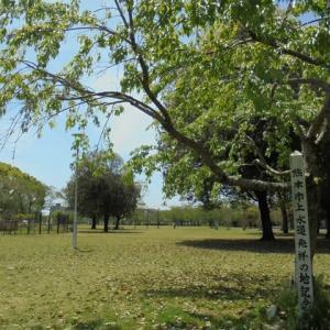八景水谷公園・寂心緑地までポタリング