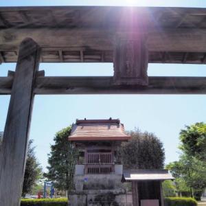 新緑の竹迫城跡公園までポタリング