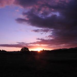 予想より北に顔出す夏至の朝