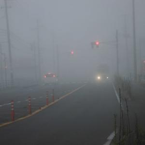 霧の朝音と光が身を護る